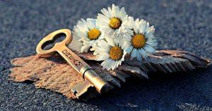 white flowers dream key