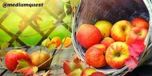 basket of apple