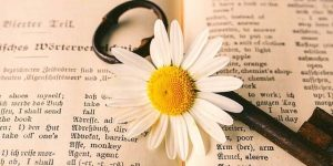 Book with a key and a white flower